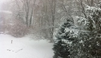Snow, snow, look at the snow