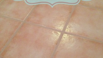Grout Makeover with Grout Renew