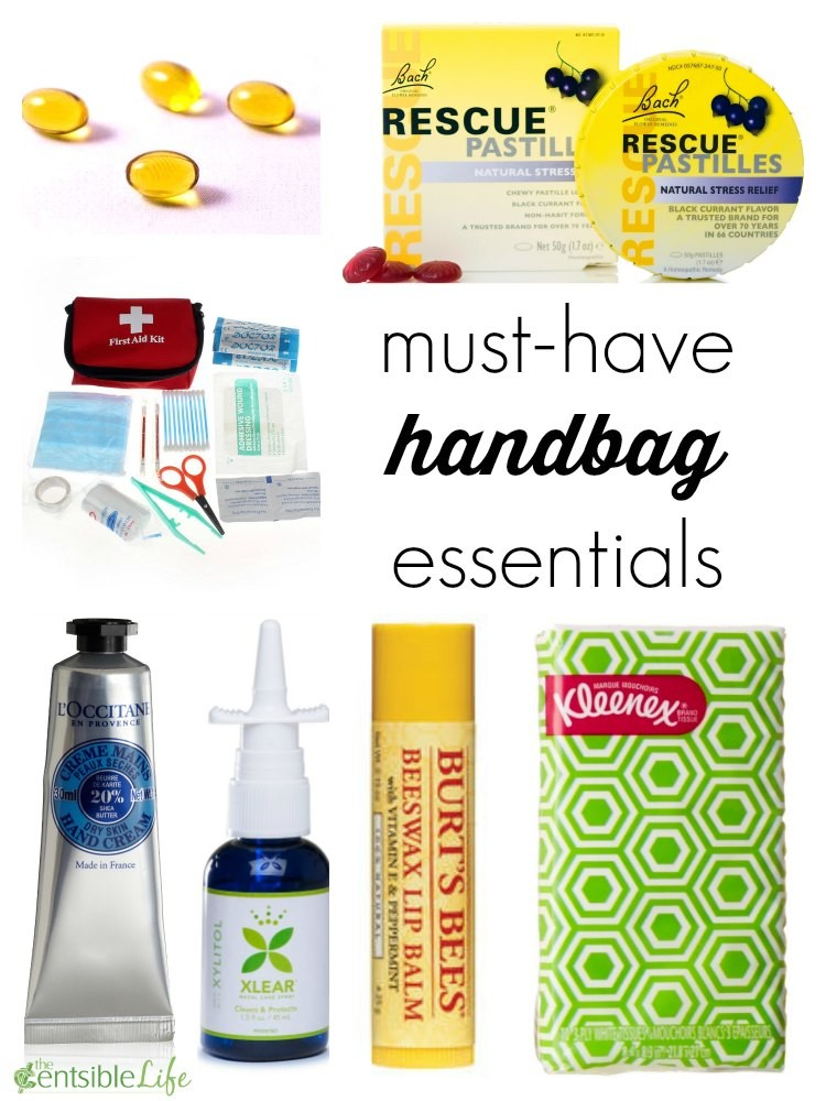 Must Have Makeup Brushes: Must-Have Handbag Essentials Kit