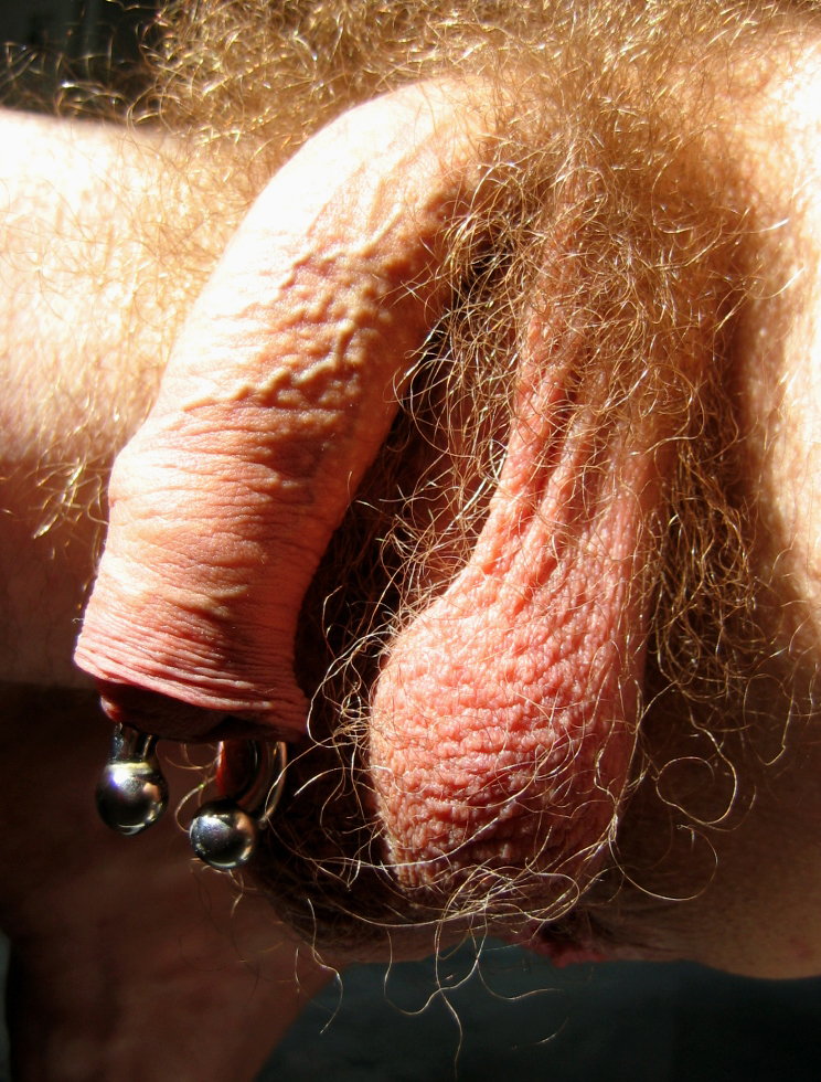 Very Deep Cock Piercing Pics