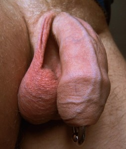 Penis Piercings for Uncircumcised Men