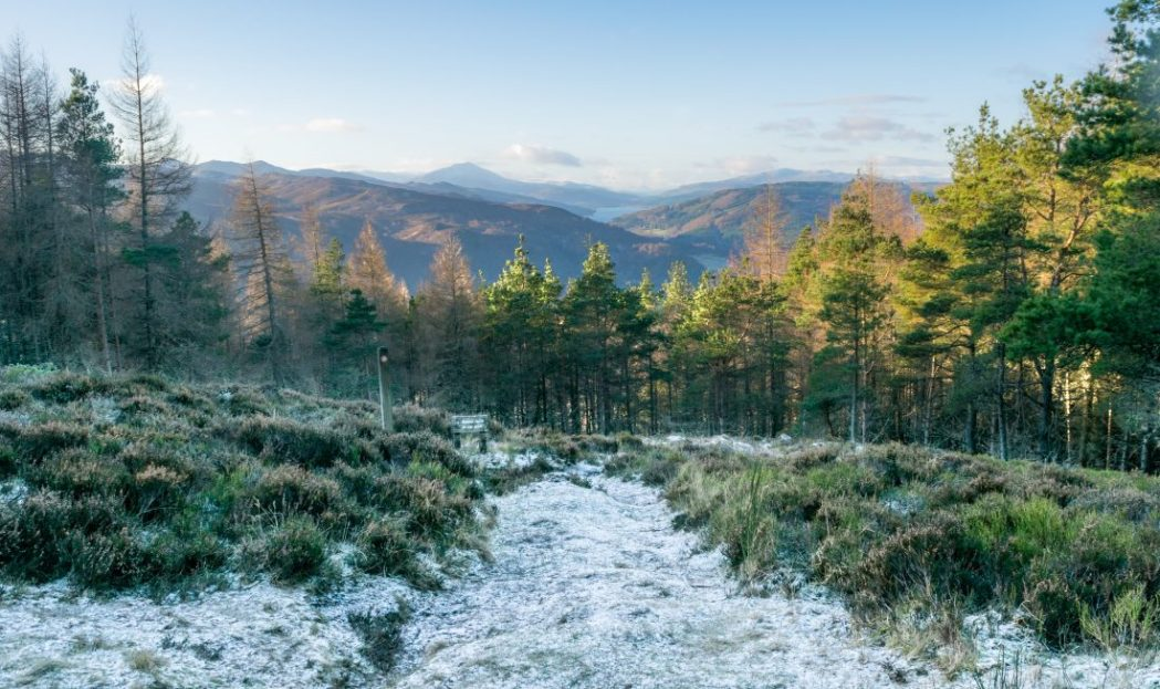 Embracing Còsagach in Wintry Pitlochry