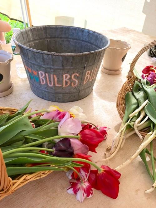 Tulip bouquet in basket
