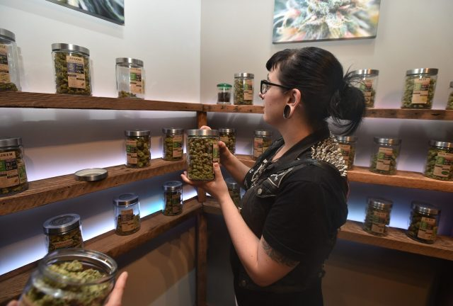 Woman browsing different types of marijuana in jars on shelves, in well-lit, upscale surroundings