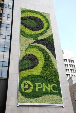 PNC Muralha Verde