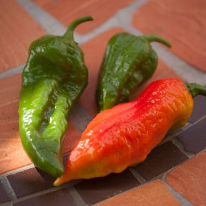 Naga Chillies - Scoville Heat Unit