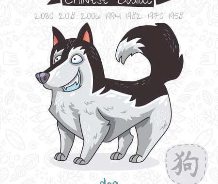 Dog 2019 Chinese Horoscope & Feng Shui Forecast