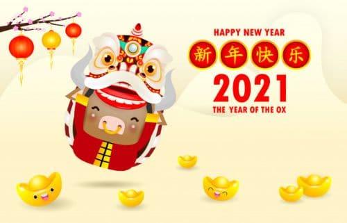 Chinese New Year 2021 - Spring Festival Celebration