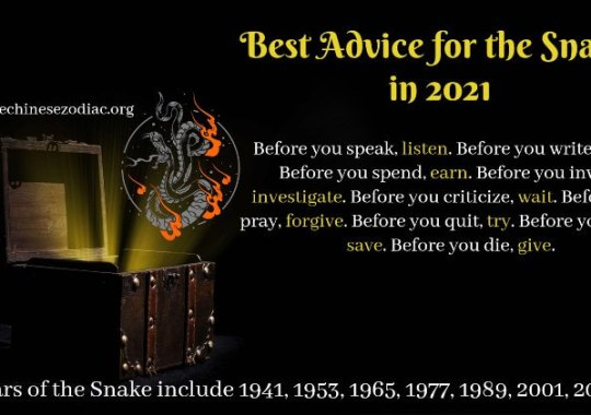 Year of the Snake – 2021 Horoscope & Feng shui Forecast