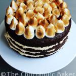 Peanut Butter Chocolate Porter Cake