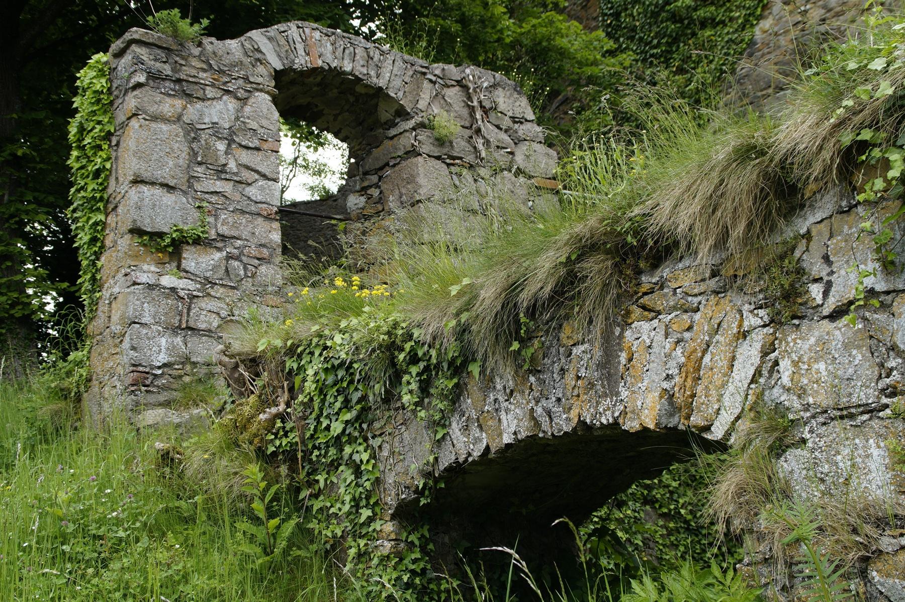 Ruine castle-788416