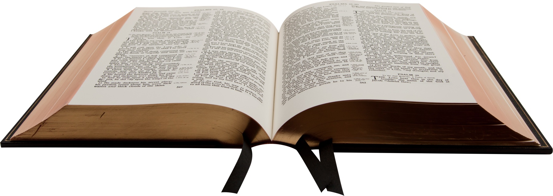 bible-1108074