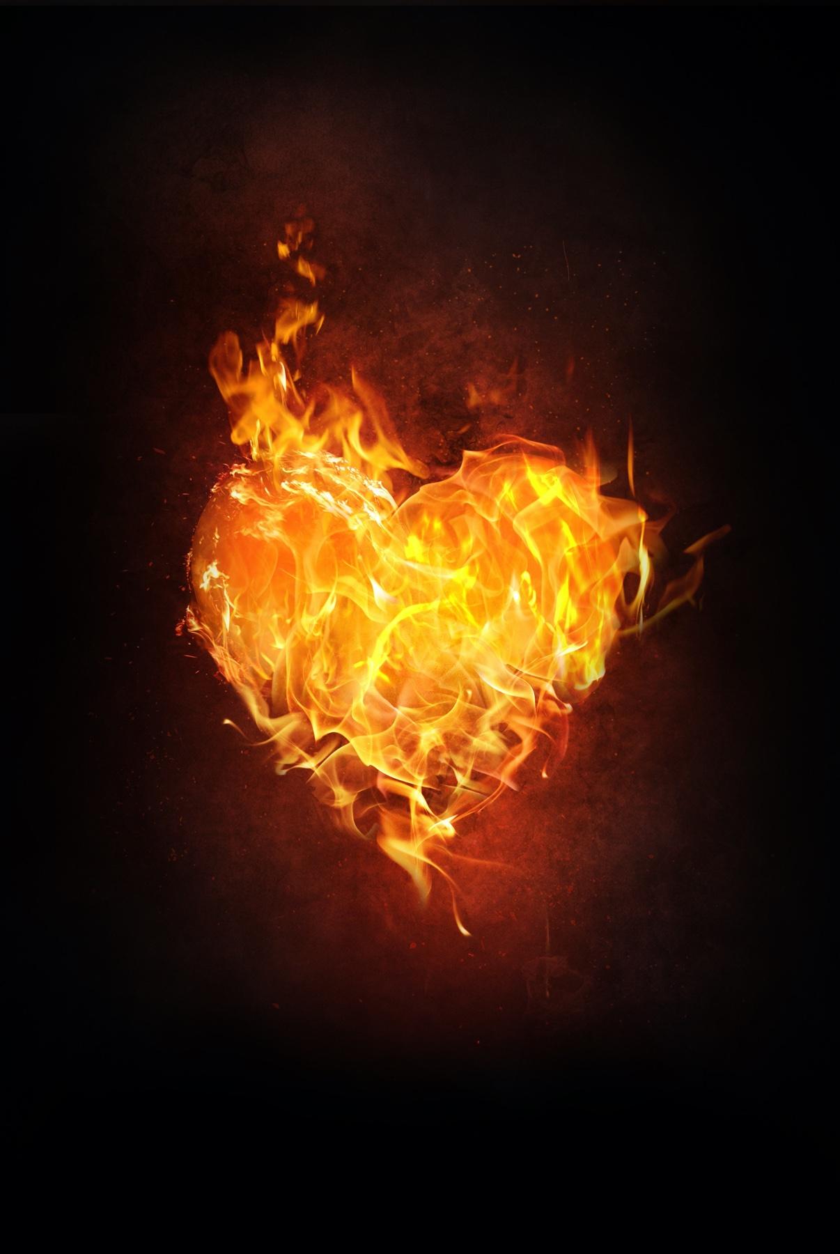 heart-1783918