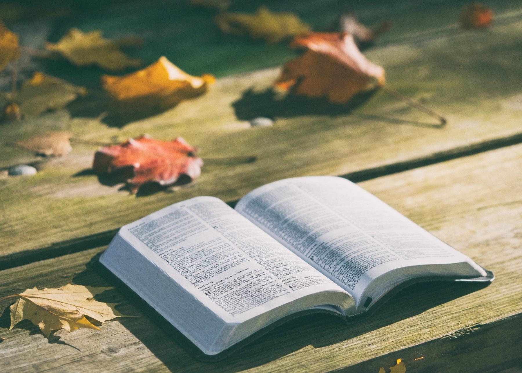 bible-1868070