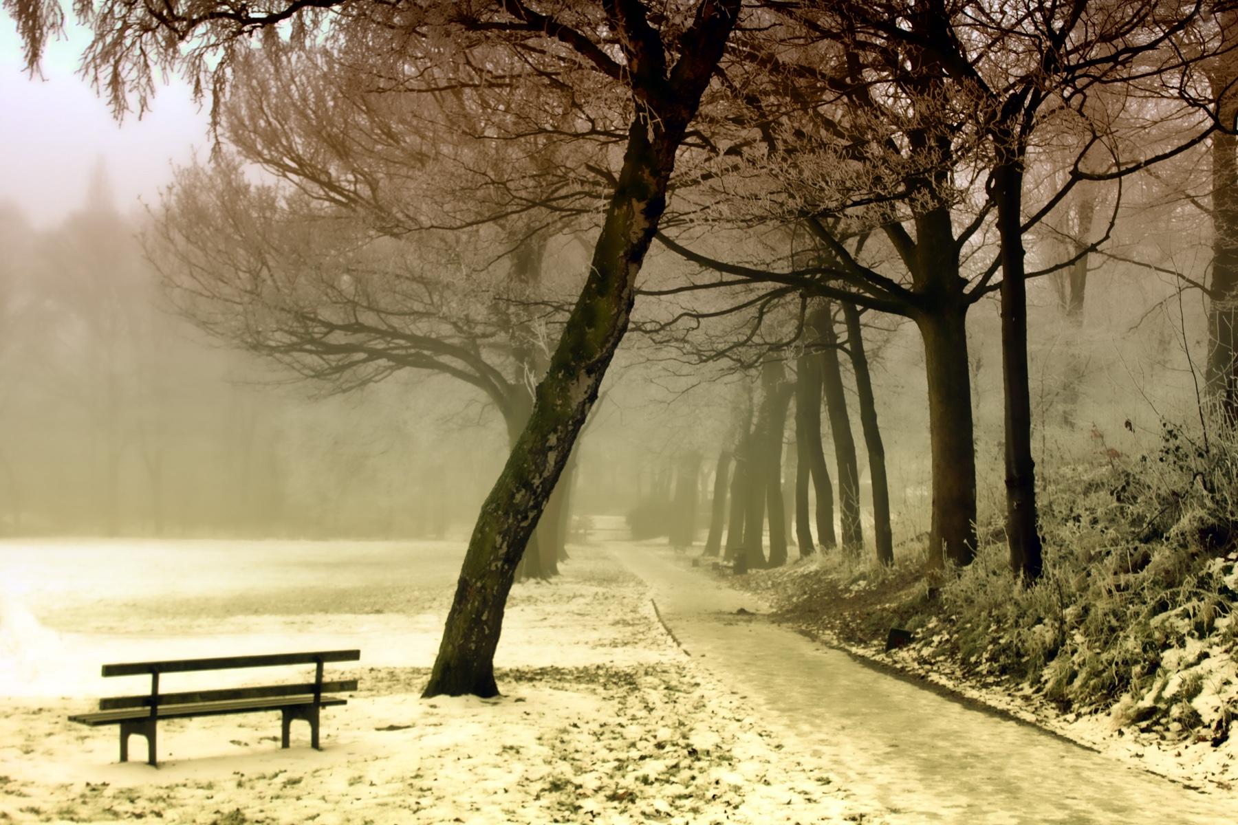 winter-843305