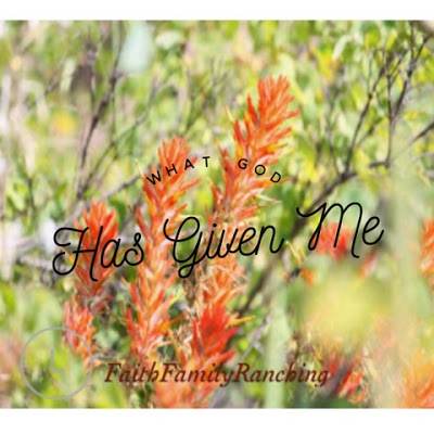 A Sunday Thought~ What God Has Given Me