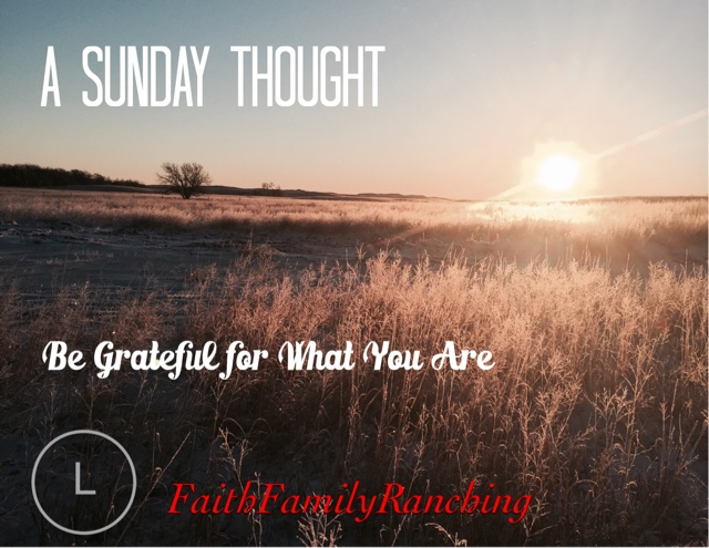 A Sunday Thought~Be Grateful For What You Are