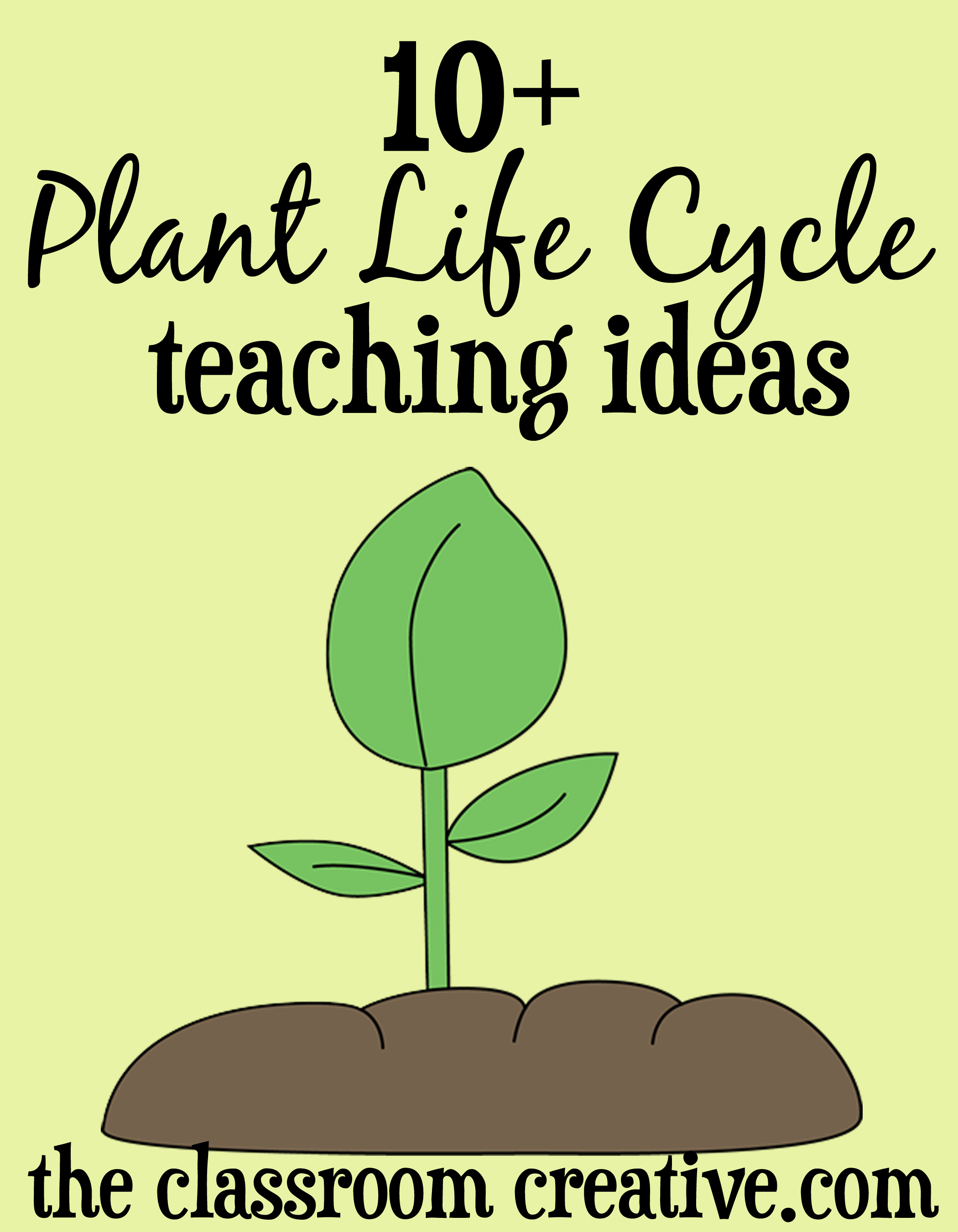 Plant Life Cycle Unit Ideas And Activities