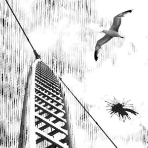 Tim Susa - Desire & Regress EP - Broque
