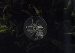 Leonel Castillo - El Niño - Greener Records