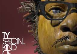 TY – Special Kind Of Fool