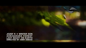 Jozef K & Winter Son - Aokigahara Forest