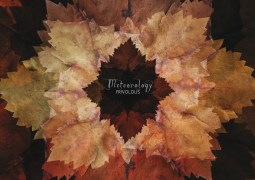 Frivolous - Meteorology - Cadenza