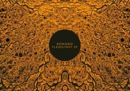 Bonobo - Flashlight EP - Ninja Tune