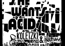 Koletzki & Schwind – She Wants Acid