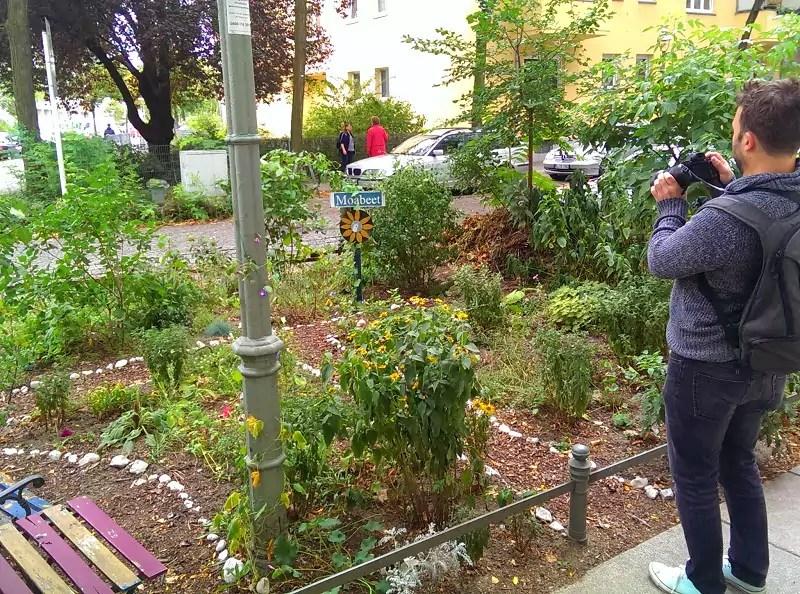 Moabeet-Berlin-urban-gardening