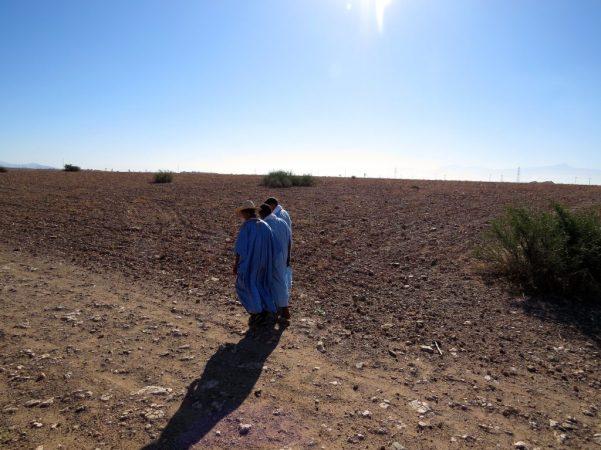Dunes and Desert Exploration