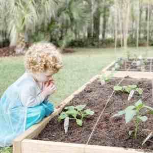 10 raised garden bed tutorials and how to diy your own fruit and vegetable garden. #raisedgarden #gardenbeds