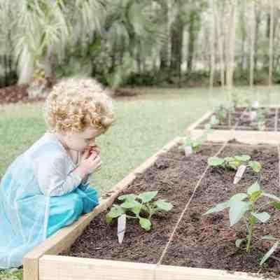 DIY Raised Garden Beds – Ten Tutorials