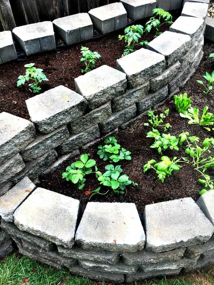 Inspiration for Moms - Garden Bed with Pavers