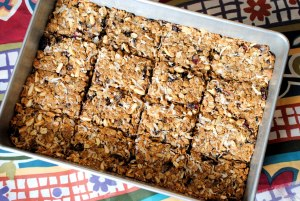 Dark Chocolate Almond Butter Lactation Bars
