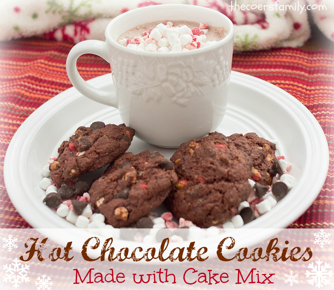 Hot Chocolate Cake Mix Cookies - The Coers Family