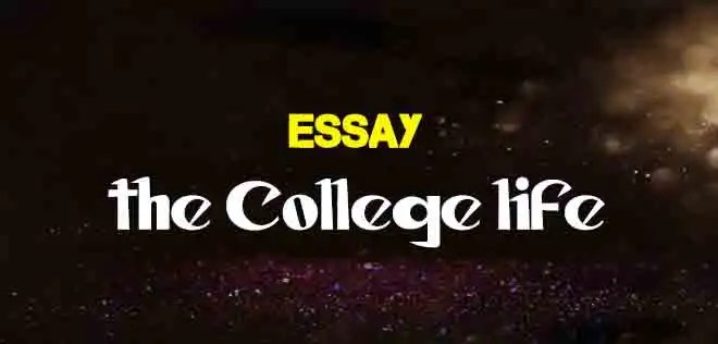 Essay on college life