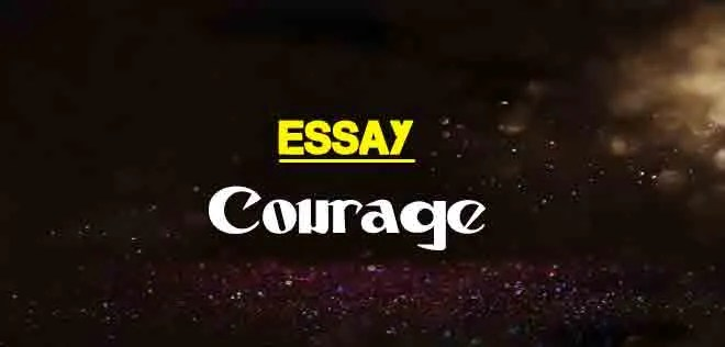 Short Essay On Courage In English For Students • English Summary