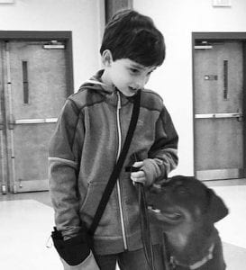 Henry Barbas and his Rottweiler Brady made training walking nicely on lead look easy.