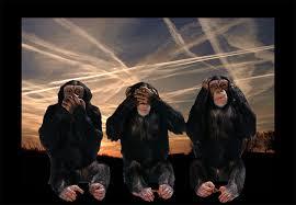 gore monkeys hear no evil