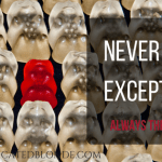 Never the Exception:  Always the Rule