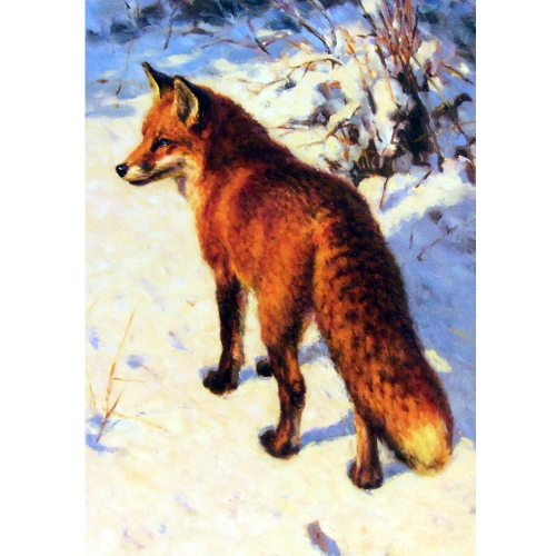 Christmas Cards Fox 10 Pack