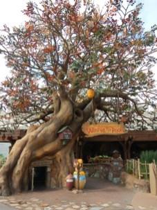Pooh Entrance