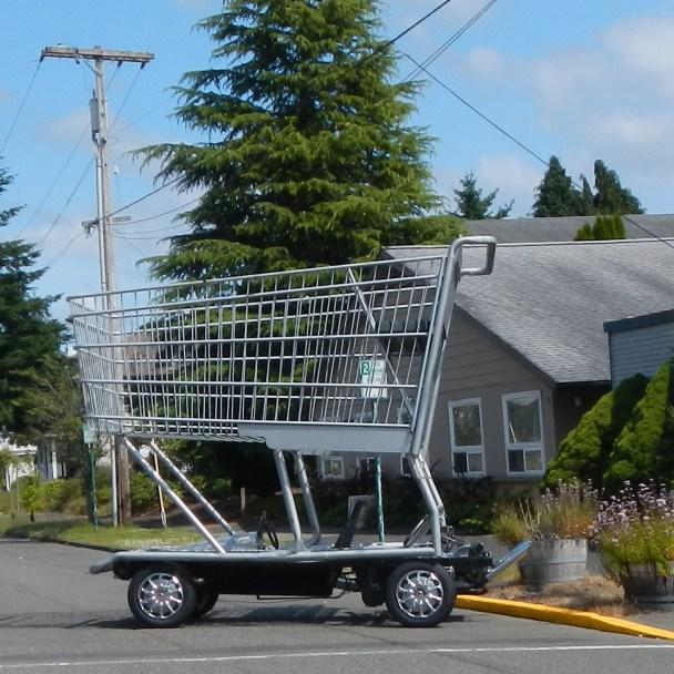 Shopping Buggy Race Car