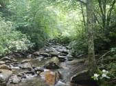 River in Smokies 2
