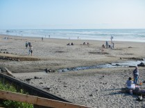 Oregon Beach 2