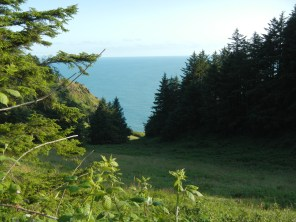 View down the hillside
