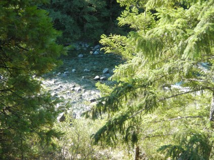 Six Rivers National Forest 6