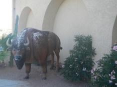 Buffalo Statue Arizona
