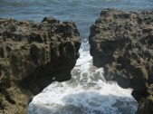 Blowing Rocks Jupiter Florida 13